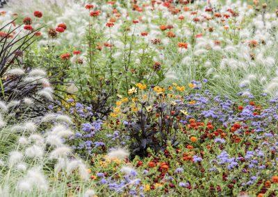 Ferdinand Graf Luckner Internationale Garten Ausstellungen 005