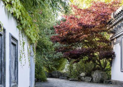 Ferdinand Graf Luckner Internationale Garten Ausstellungen 007