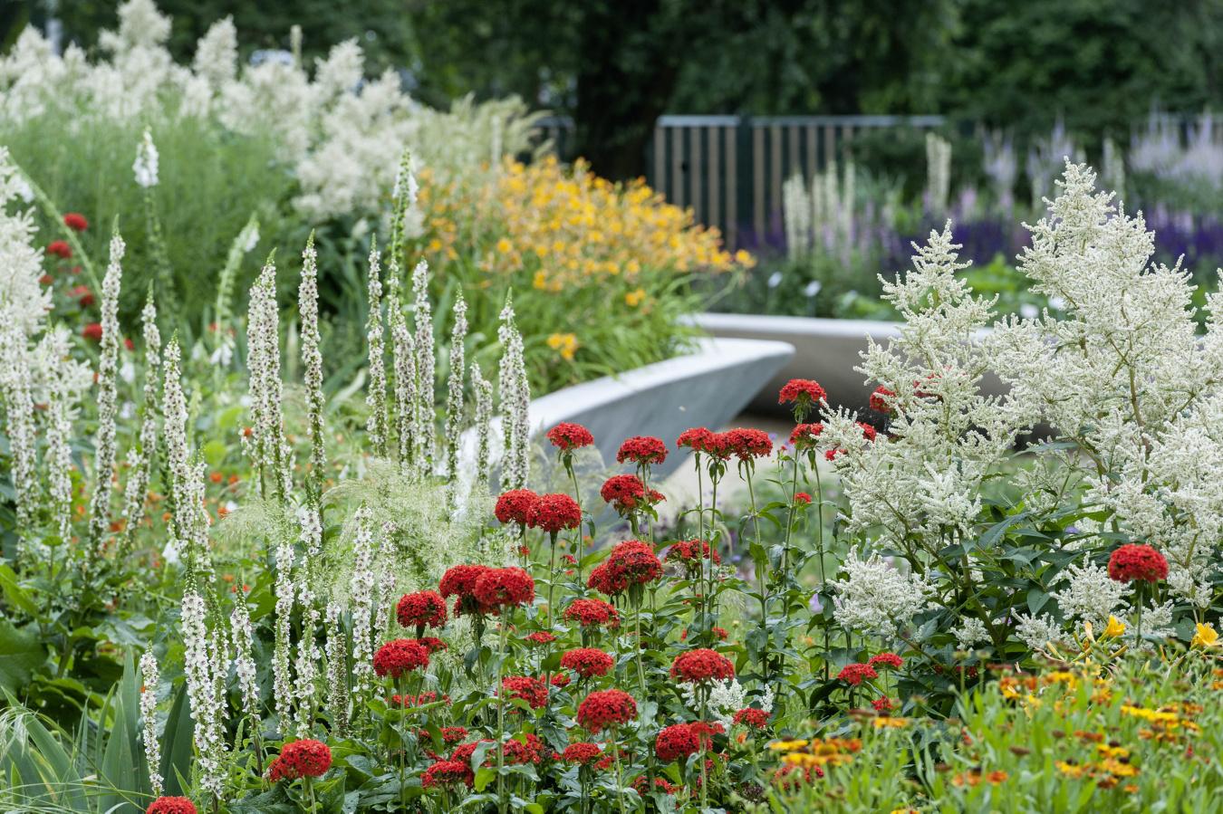 Ferdinand Graf Luckner Internationale Garten Ausstellungen 014