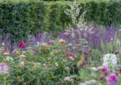 Ferdinand Graf Luckner Buch Der Neue Rosen Garten 002