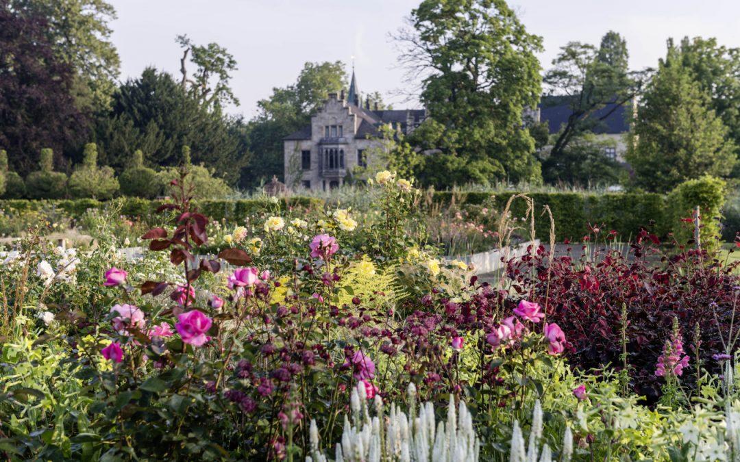 Der neue Rosengarten