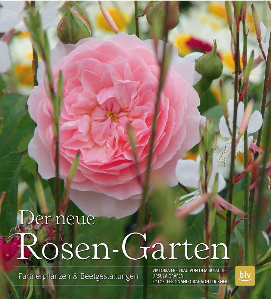 Ferdinand Graf Luckner Buch Der Neue Rosen Garten 020